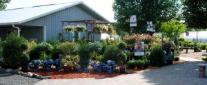 Garden Center Osceola WI